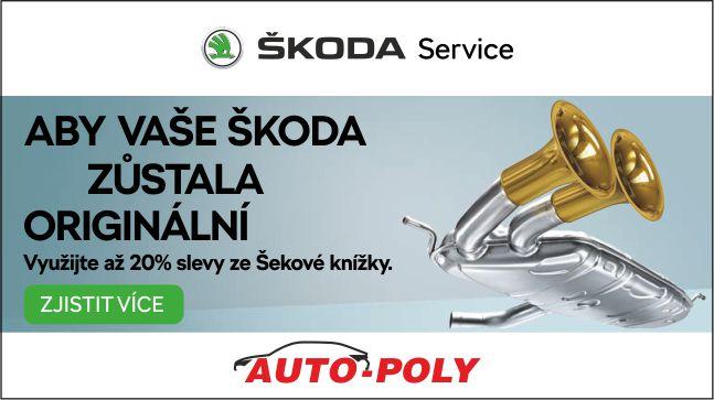 Auto Poly 01 2019