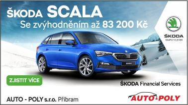 Auto Poly 01 2021